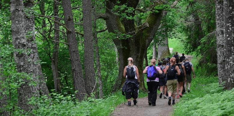 Tre insjöar på Lidingö